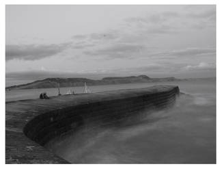 the cobb by spurs06