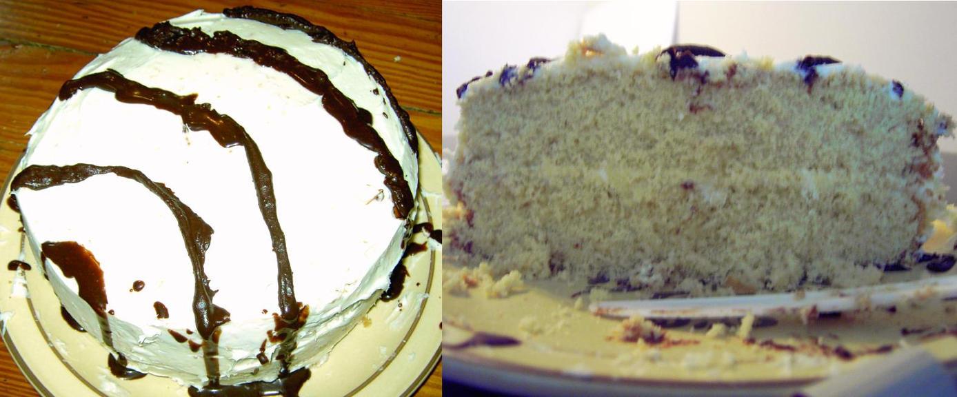 Zebra Cake by ZaksBlood13
