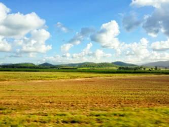 The paddocks  by TipBro