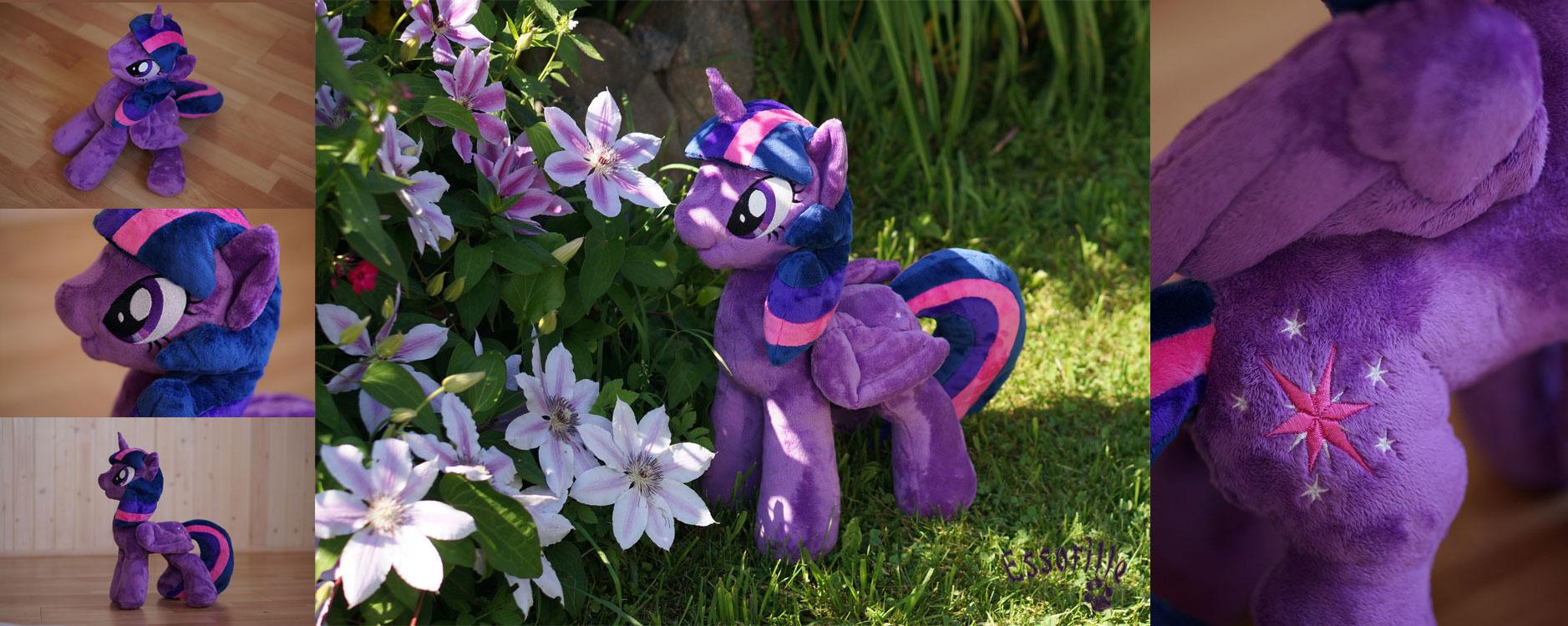 Twilight Sparkle, Twilicorn by Essorille