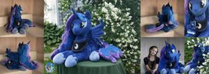 Lifesize Luna