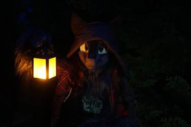 Night lantern