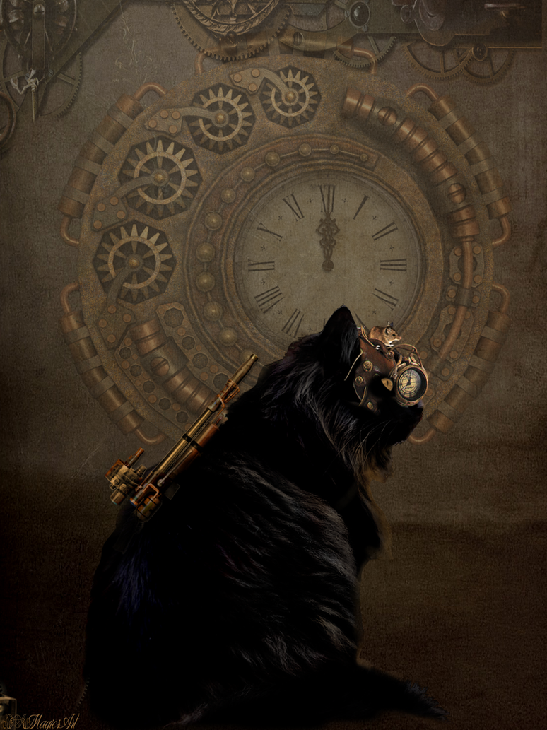 steamcat by magicsart