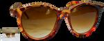 Sunglasses by magicsart