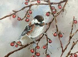 Bird, Bird... by Kuvari