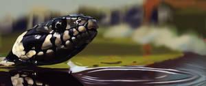 Procreate Snake by Kuvari