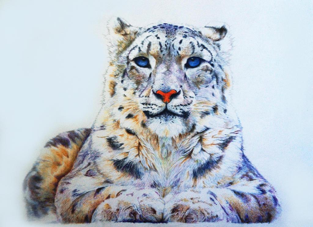 Snow Leopard by Slozzenger90