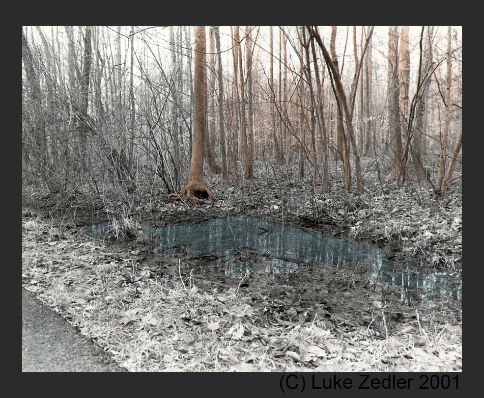 Nature off the beaten path