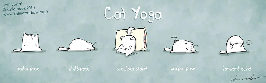 cat yoga by katiecandraw