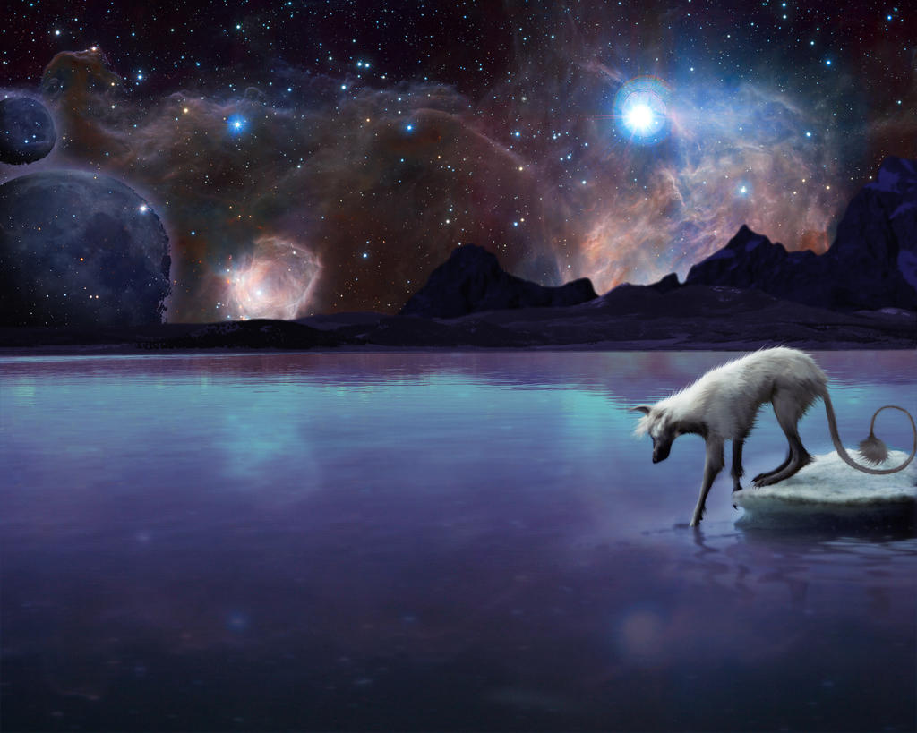 Mystic Wolf by Shadowsecret on DeviantArt