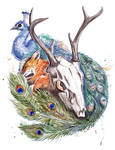 Peacock, fox and skull