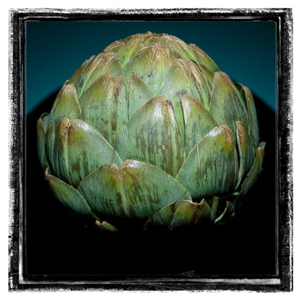 artichoke 2 by tea