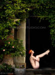 Fae Dreamer by ulorinvex