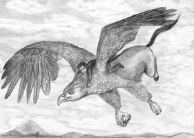 Flying on a Hippogriff
