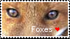 Foxes Stamp by Hawaiifan