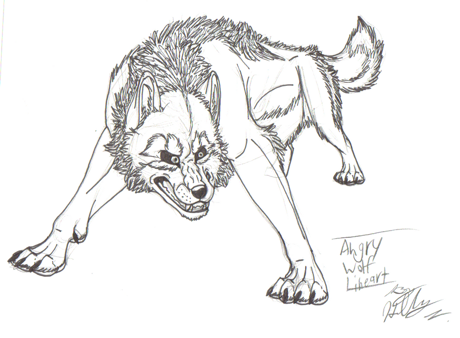 Angry Wolf Lineart by Hawaiifan on DeviantArt