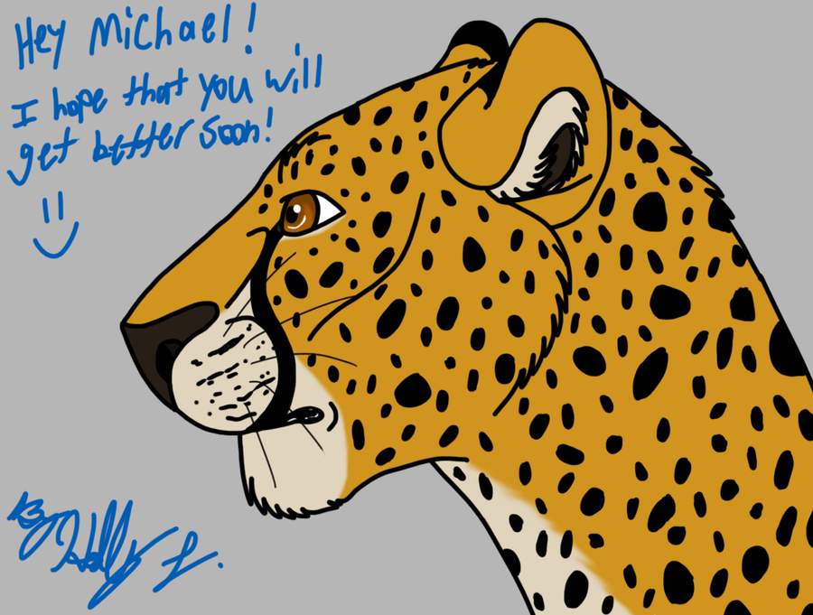 Cheetah for Michael by Hawaiifan
