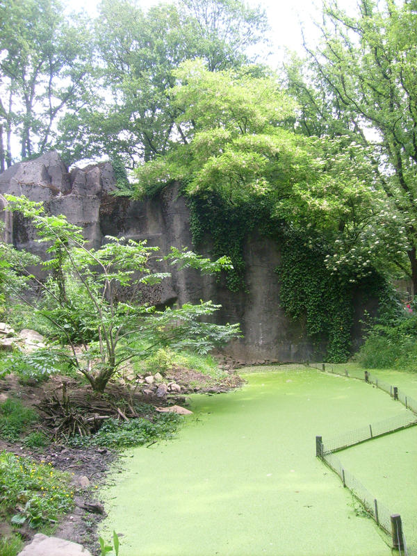 green waterscape by ingeline-art