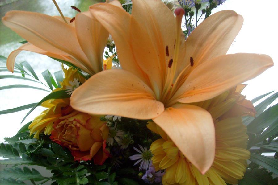 Slike vašeg omiljenog cveća Greetings_and_thanks_by_ingeline_art