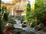 japanese garden waterscape 5