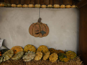 autumn decoration by ingeline-art