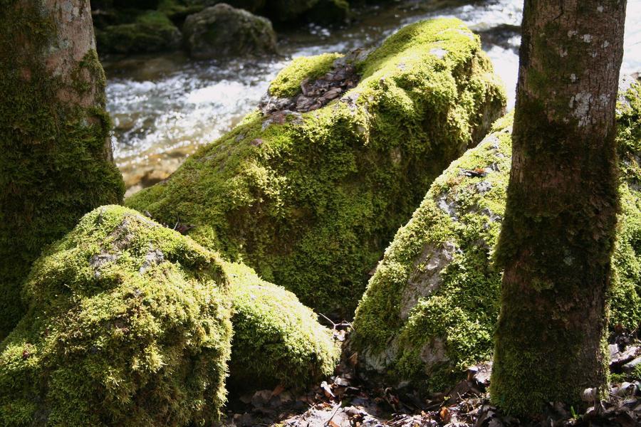 big mossy stones by ingeline-art