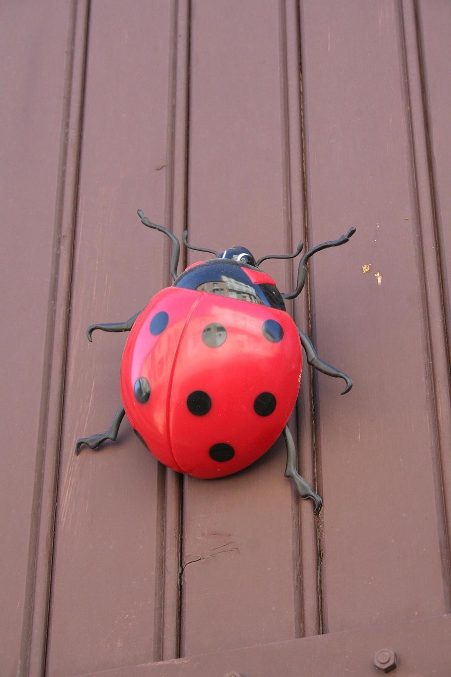 lady bug figure by ingeline-art