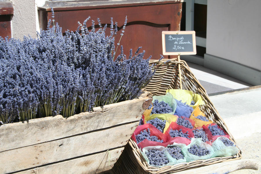 look in provence lavender by ingeline-art