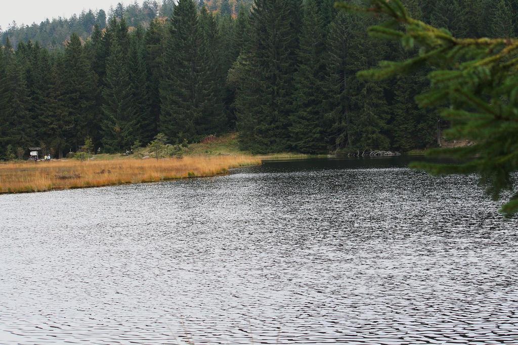 litle Arber lake by ingeline-art