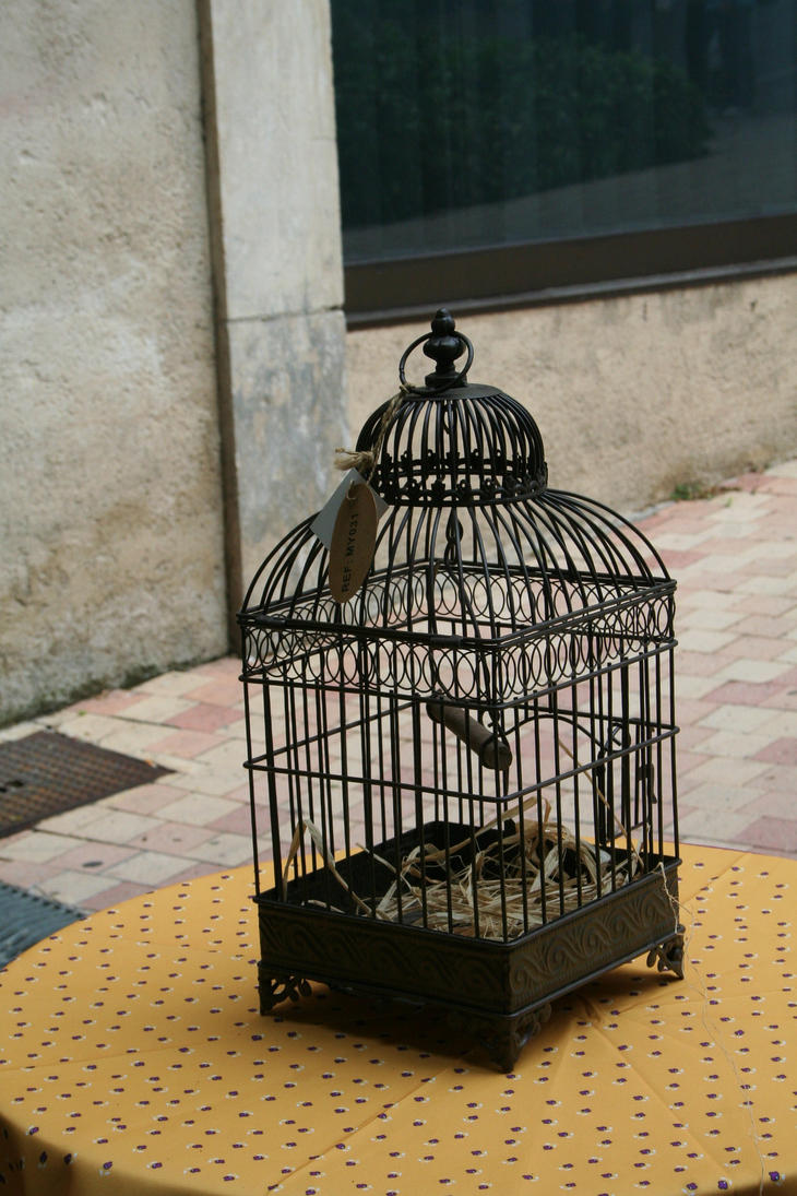 old birdcage by ingeline-art