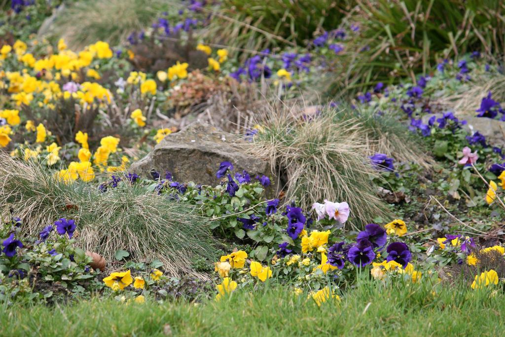 view in Flora garden in spring 16 by ingeline-art
