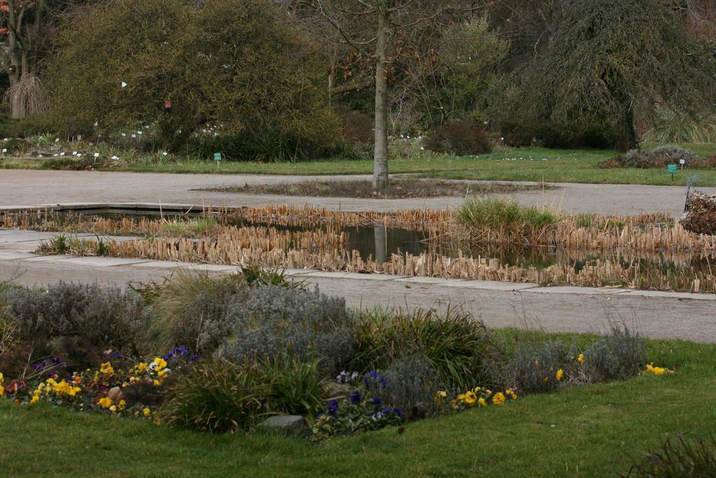 view in Flora garden in spring 18 by ingeline-art