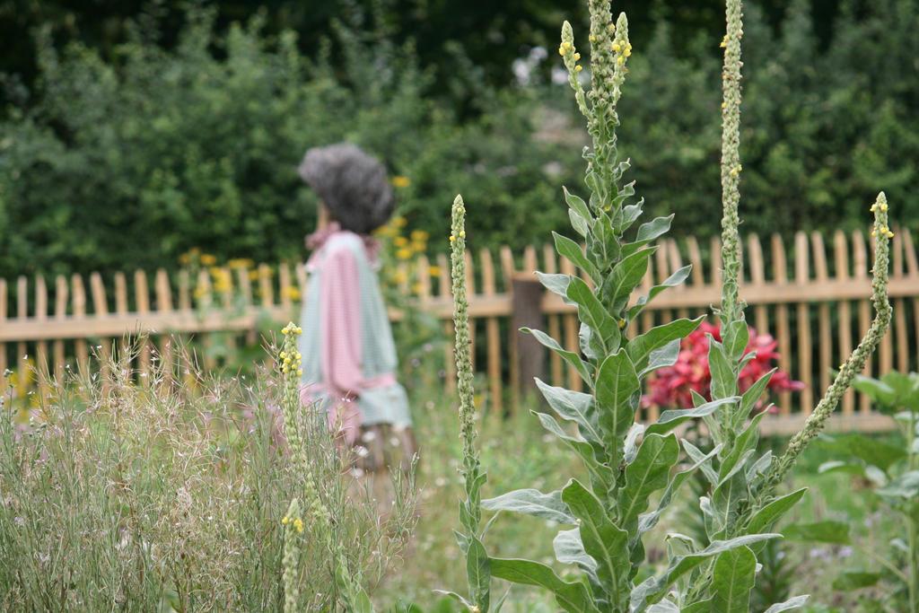 view in garden in Lindlar by ingeline-art