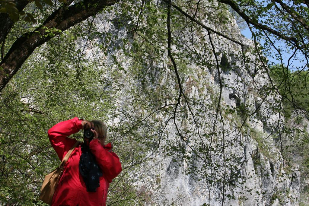 Ingeline in national park 2 by ingeline-art