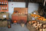 view to pumpkin decoration 17