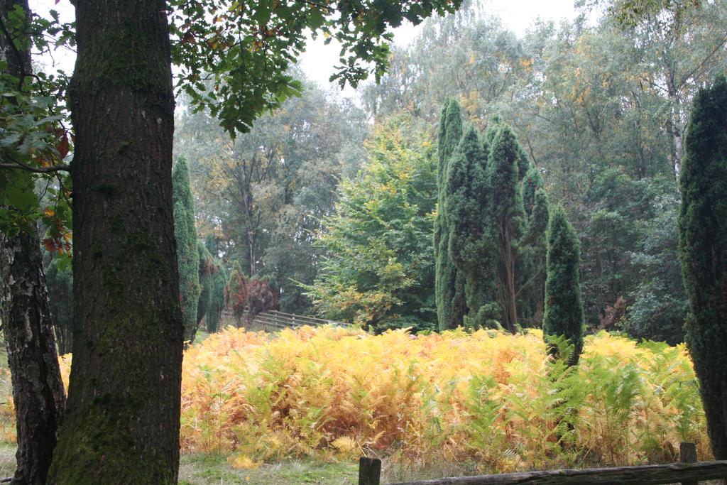 view in autumn 7 by ingeline-art