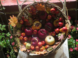 basket with apples by ingeline-art