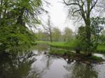 view in park in Muskau 12
