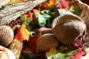 autumn decoration 9 by ingeline-art