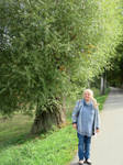 Ingeline at Sauer river