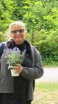 Flower greetings from Ingeline by ingeline-art