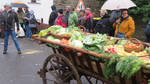 seen t harvest festival 35