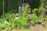 nice garden 2