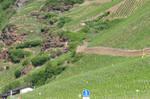 view at Mosel from caravan 3