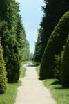 view in castle park 2