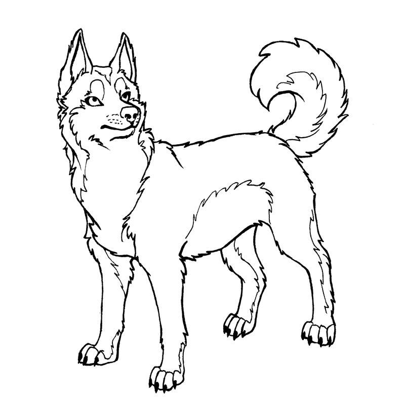 Husky lineart by Xiphosuras on DeviantArt