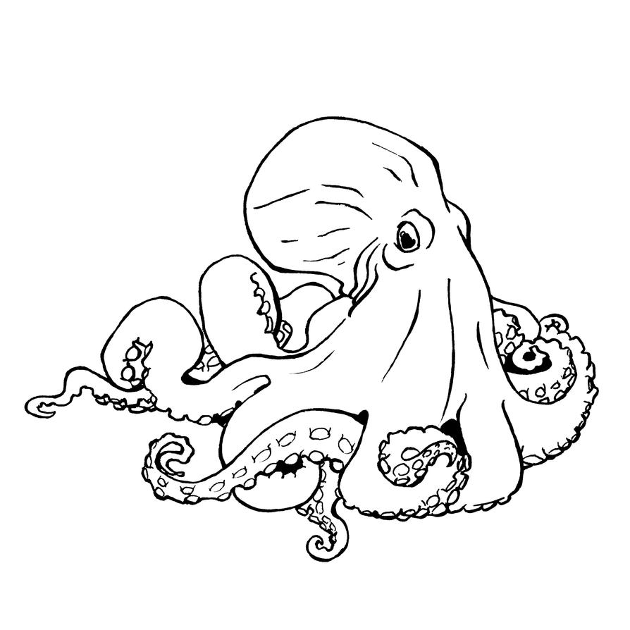 Line Art Octopus : Octopus lineart by xiphosuras on deviantart