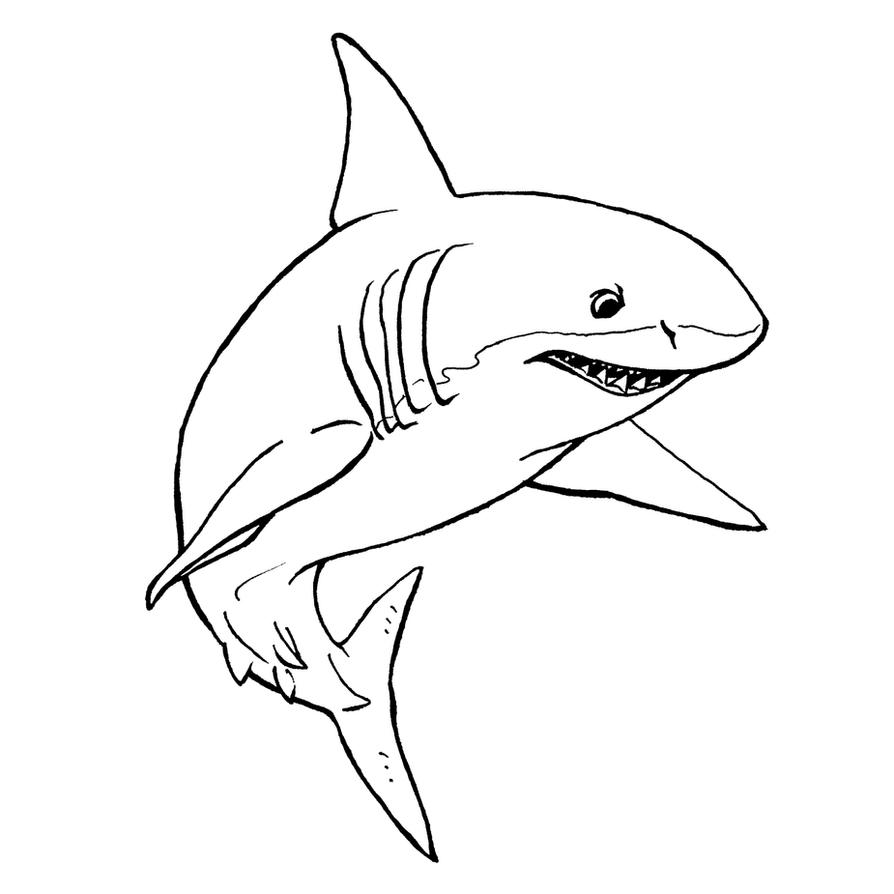 Line Drawing Shark : Great white shark lineart by xiphosuras on deviantart