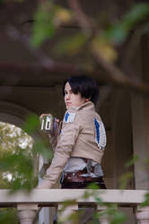 SNK - Never turn your back by Bitenshi