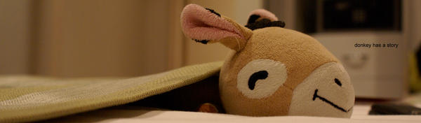 donkey has a story by tishakazan
